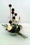 Metamorfózy ruží