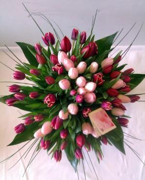 tulipánmi